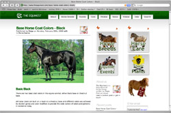Screenshot of The Equinest website