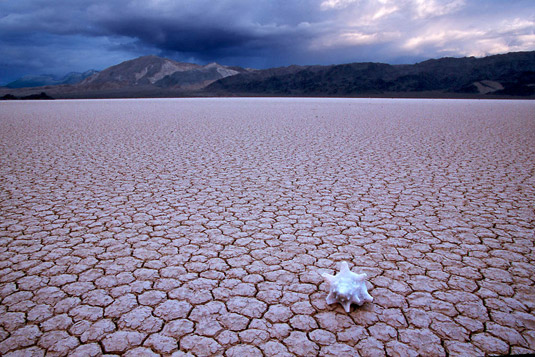 Dry desert